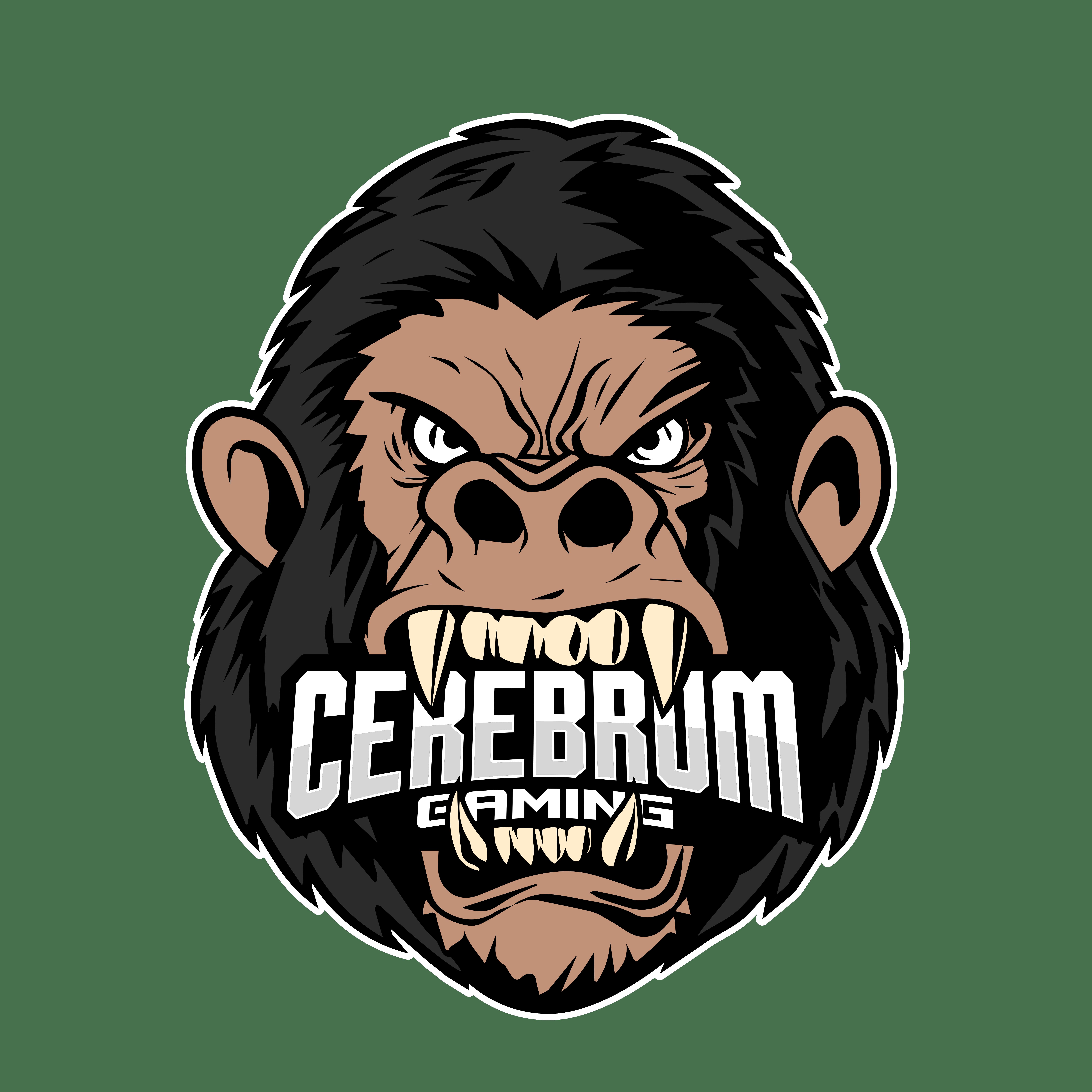Cerebrum Gaming